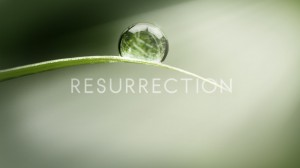 Resurrection_ColorLogo300-1024x576