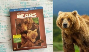 Disneynature BEARS DVD